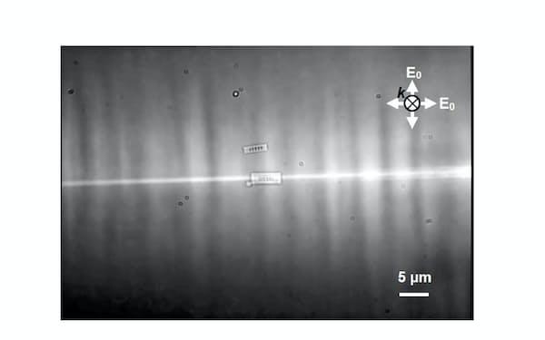 光駆動リニアナノモーターが光照射を受けながら液体中を直線状に移動する様子(東京大学提供)