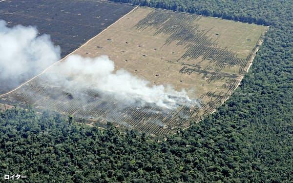 焼き畑で失われるアマゾンの森林=ロイター