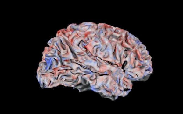 fMRIの解析結果をもとに再現した動画視聴中の脳活動。赤が働いている部位を表す(NICT脳情報通信融合研究センター提供)