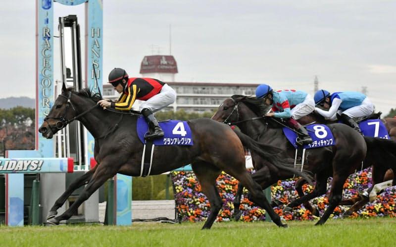 第37回マイルチャンピオンシップを制したグランアレグリア。中央は2着のインディチャンプ、右は3着のアドマイヤマーズ(22日、阪神競馬場)=共同
