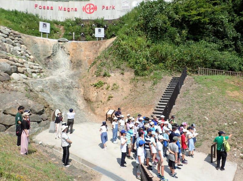 新潟大とフォッサマグナミュージアムはこれまでも教育活動で連携してきた(19年8月、糸魚川市)