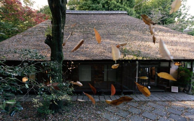 武相荘として公開されているかやぶき屋根の旧白洲邸の母屋。落ち葉がクモの巣にとどまり風に揺れていた
