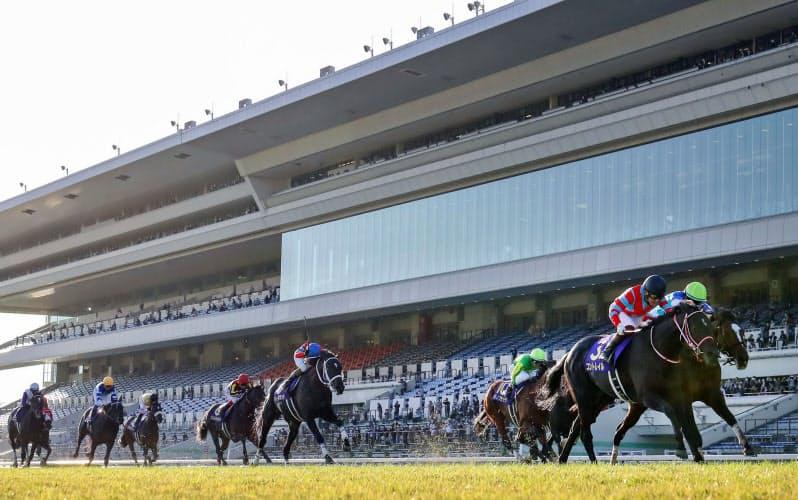 京都競馬場で行われた第81回菊花賞を制し、史上3頭目の無敗での三冠を達成したコントレイル(右から2頭目)=共同