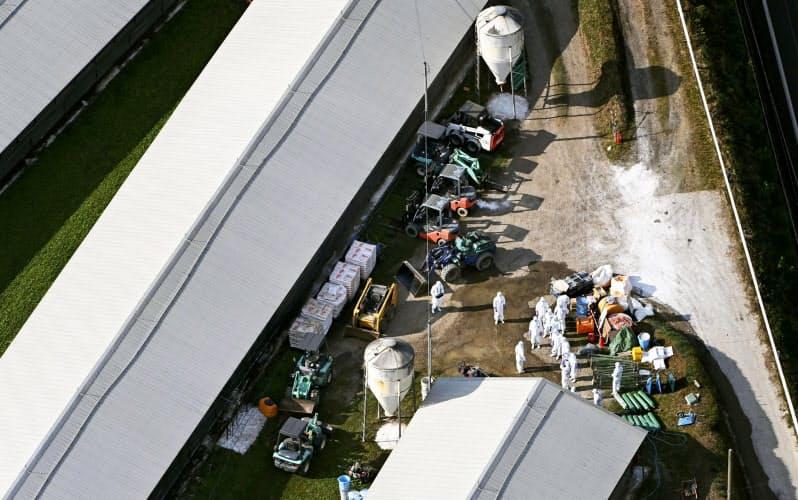 鳥インフルエンザが確認された養鶏場で続く消毒作業(2日、宮崎県都農町)=共同