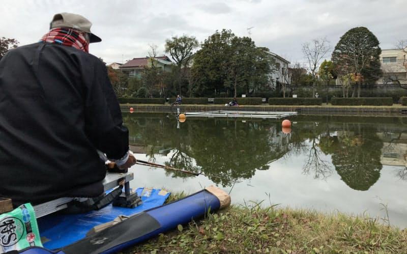 浮きを見つめ、ヘラブナのアタリを待つ(11月、東京都江戸川区の行船公園)