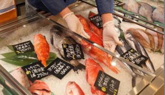 新鮮な地魚を都会で食べる機会が増えている(東京・目黒の「サカナバッカ中目黒」)