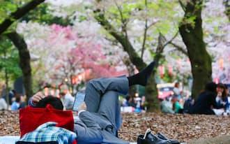 同僚と花見をするため場所取りをする会社員(6日、東京都台東区の上野公園)