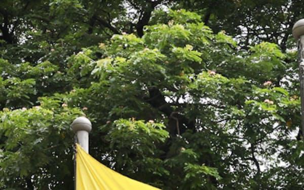 ミャンマーの国旗(ヤンゴン)