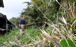 自宅裏の耕作放棄地に出没するイノシシの被害に頭を悩ます坂本さん(千葉県南房総市)