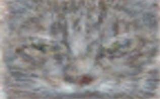 ディープラーニングを利用した人工知能が認識した「グーグルの猫」