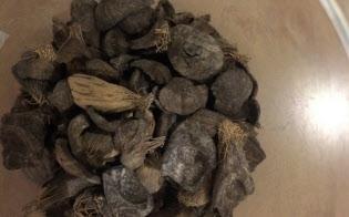 パームヤシ殻は油分が多く、熱効率がよい