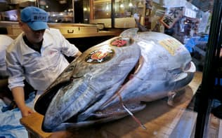 日本はクロマグロの世界消費の8割を占めるといわれる