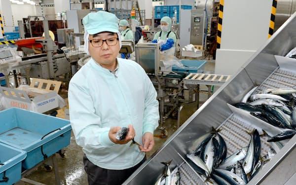 加工場で水揚げされたサバを見て回る阿部長商店の阿部泰浩社長(宮城県気仙沼市)