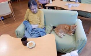 ペットと暮らす特別養護老人ホームの入居者(神奈川県横須賀市の「さくらの里山科」)