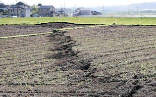地震で地表に出現した断層(17日、熊本県益城町)