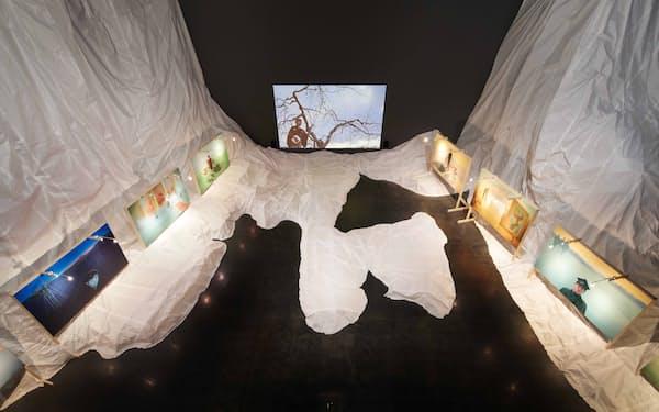 小沢剛「帰って来たS.T.」展示風景(2020年、楠瀬友将撮影)