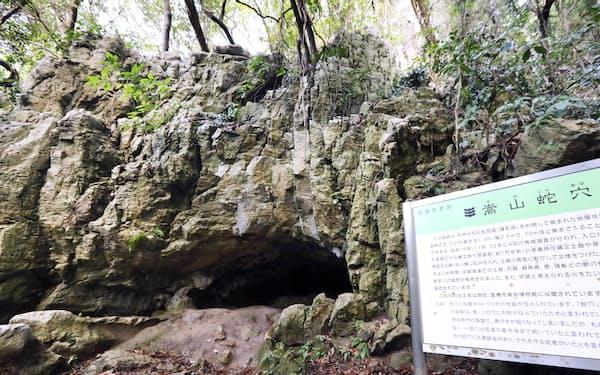 山肌にぽっかりと開いた嵩山蛇穴(愛知県豊橋市)