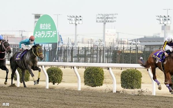 川崎記念で中央馬を抑えて優勝したカジノフォンテン(右端)。中央競馬のオメガパフューム(左端)が2着、ダノンファラオ(左から2頭目)が3着=共同