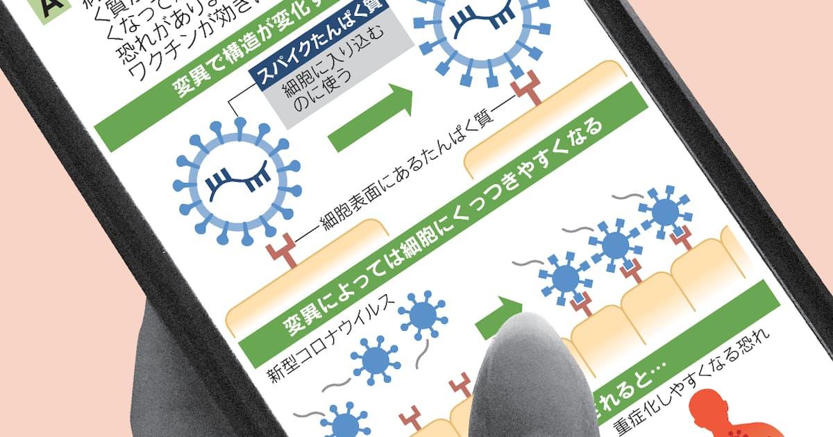 ウイルス 兵庫 県 変異