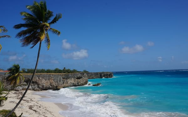 バルバドスでは年収5万ドル以上の国外のテレワーカー向けに特別なビザを発行し、島への移住を促している=AP
