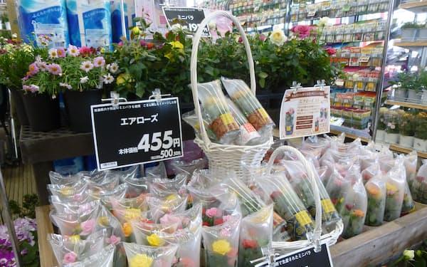 サンデー根城店(青森県八戸市)に並んだ「エアローズ・ミニ」など