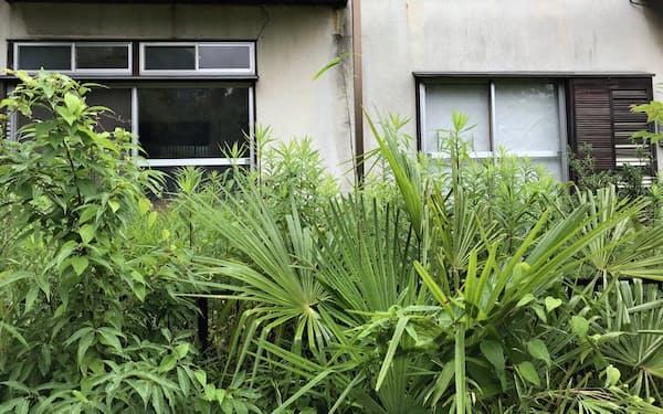 庭の雑草が生え放題となった空き家