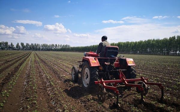 中国の大豆やトウモロコシは単位面積あたりの生産量拡大も課題(黒竜江省)