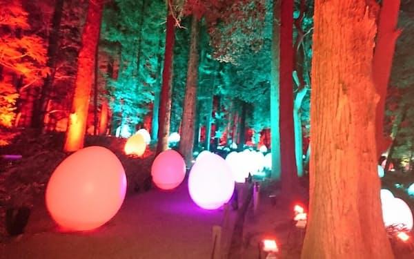 「光の祭」では大杉森を卵形のオブジェで幻想的にライトアップした(2月26日の内覧会)