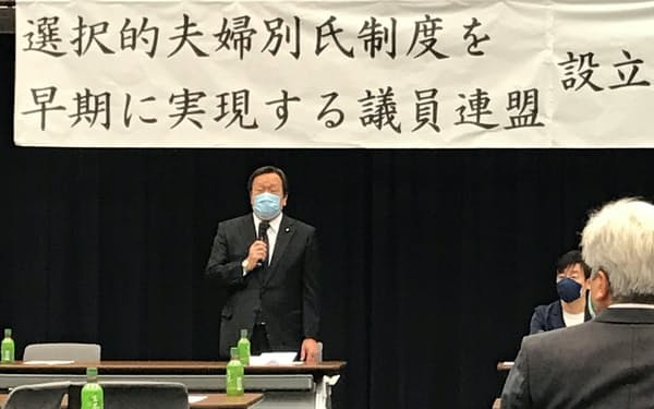 議連の設立総会であいさつする浜田靖一会長(25日、国会内)