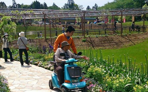 ハンドル型電動車いすは高齢者が移動に利用することも多い(写真は電動車いす安全普及協会提供)
