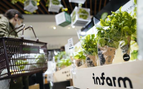 スーパー「紀ノ国屋」の店内で野菜を栽培・販売するインファームの野菜