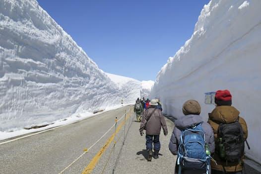 全線開通した立山黒部アルペンルートの雪壁の間を歩く人たち(15日午前、富山県立山町)=共同