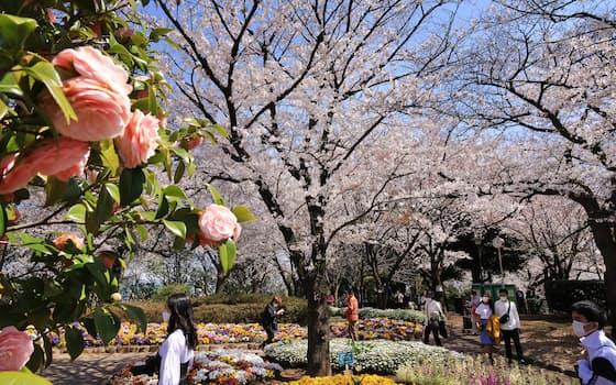 満開の桜とともに咲き乱れる花々が訪れる人たちを楽しませる