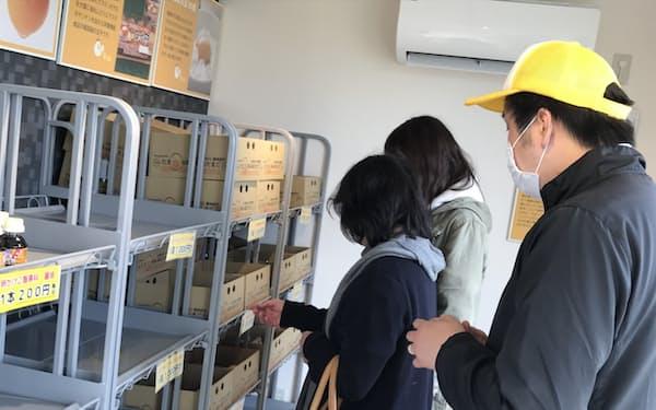 ひたち農園の無人直売所では20~50個入りの鶏卵を一律1000円で購入できる(茨城県ひたちなか市)