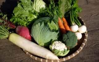 久松達央氏が有機栽培で育てた野菜