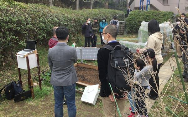 横浜市住宅供給公社の住宅で全自動の菜園ロボの実証を始めた(3月、横浜市)