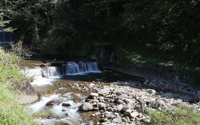 笹川を使う小水力発電の最大出力は196キロワット、400世帯分の電気をまかなえる(富山県朝日町)