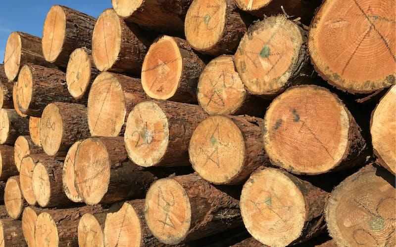 ウッドショックは木材の輸入が滞ったことで始まった