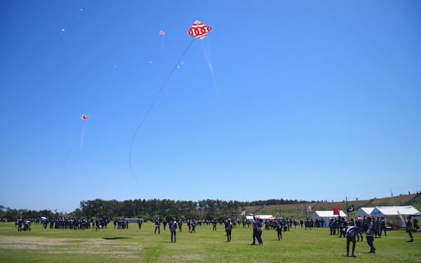 浜松まつり(浜松市)の凧の数は例年よりかなり少なかった