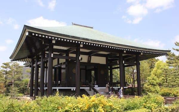 ヤマブキに囲まれた中宮寺の本堂