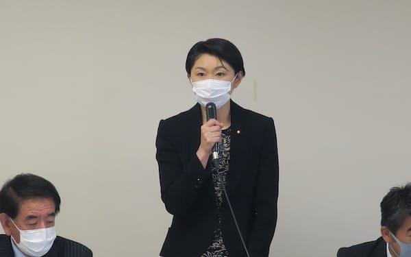 自民党財政再建推進本部小委の小渕優子委員長