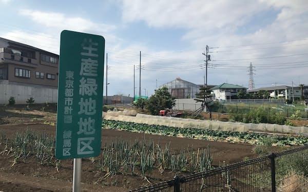 生産緑地は農作物の供給のほか災害時の一時避難所などの役割を期待されている