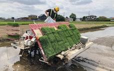 メガファーム、有機農業で成長 付加価値高め収益アップ