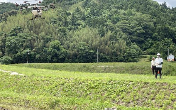 ドローンから水田に鉄コーティングした種もみをまいた(21日、山口県萩市)