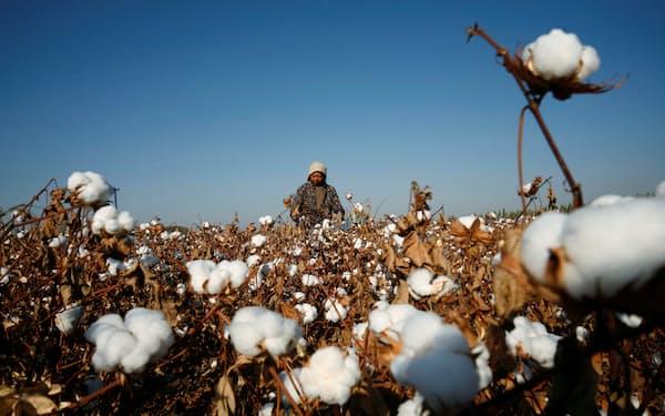 アパレル・スポーツ関連の主要上場50社のうち、14社が新疆綿を使っていると回答した=ロイター
