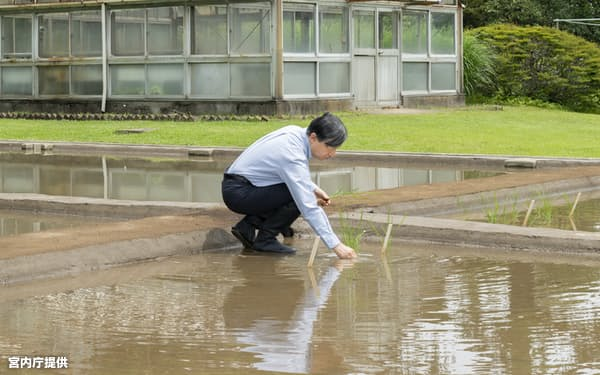 皇居内の生物学研究所脇にある水田で恒例の田植えをした天皇陛下(26日)=宮内庁提供