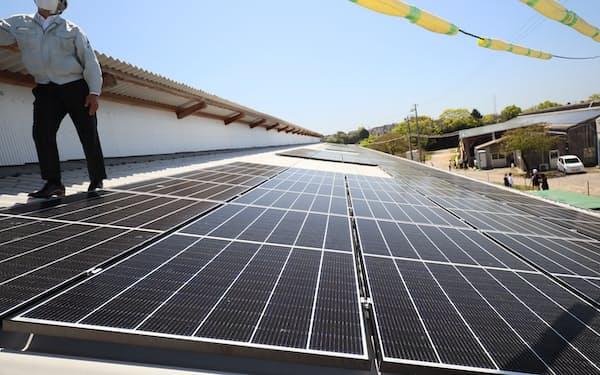 ソニーは牛舎に太陽光パネルを設置し、デジタルグリッドを介して自社グループに送電している