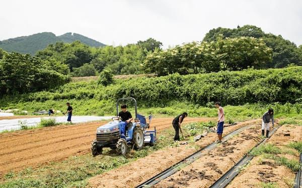 有機栽培に取り組む農場(愛媛県大洲市)