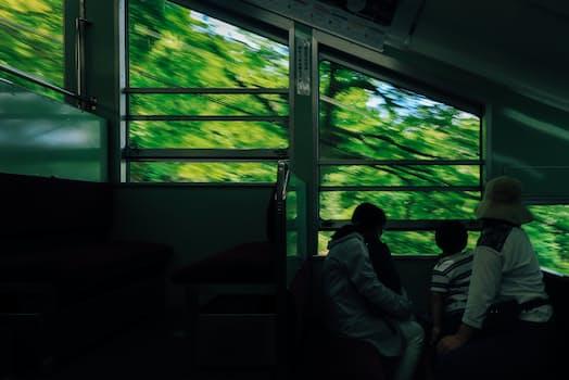 比叡山を登るケーブルカーの車窓に緑が映る。定雄は妻と長男をつれて京都から比叡山を越えて大津に向かった