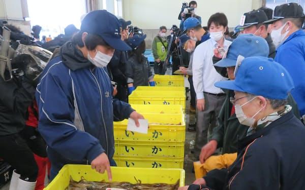北海道の函館市水産物地方卸売市場でのスルメイカ初競り(2日朝)
